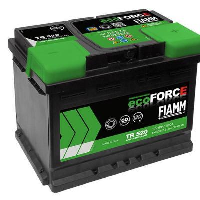 Batterie ECO FORCE EFB